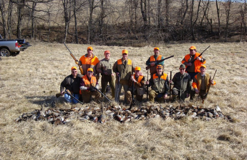 Pheasant hunting at Harpole's Heartland Lodge.