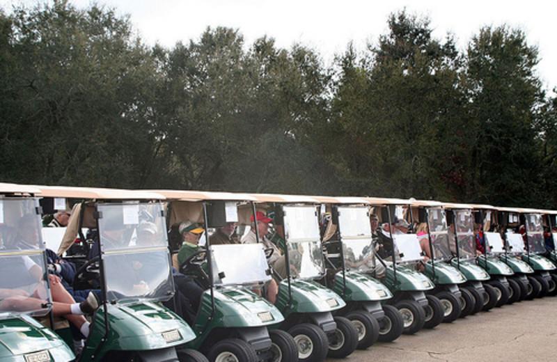 Golf Cars at Meyer Vacation Rentals