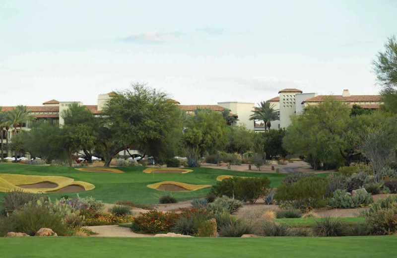 Championship Golf at Fairmont Scottsdale Princess