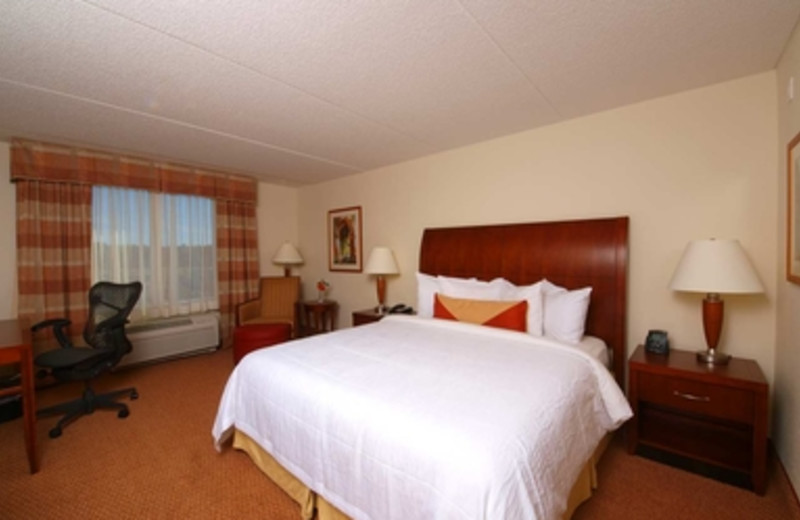Standard King Room at Hilton Garden Inn Myrtle Beach