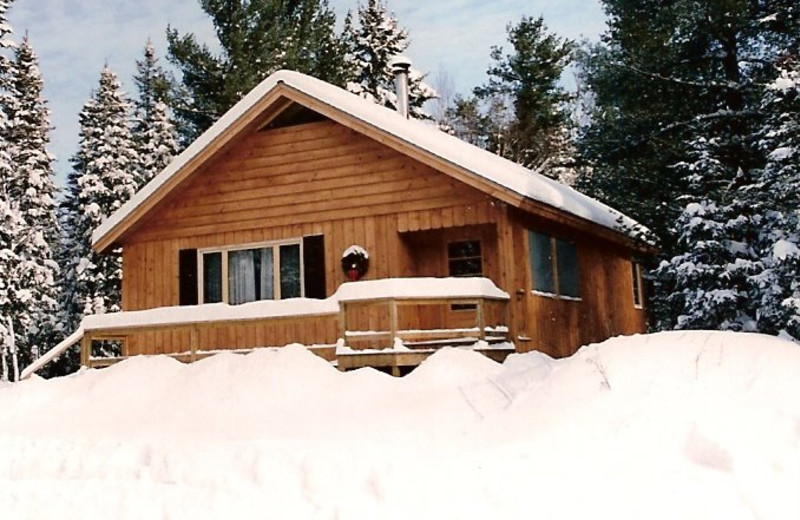 Cabin Exterior at Hohmeyer's Lake Clear Lodge