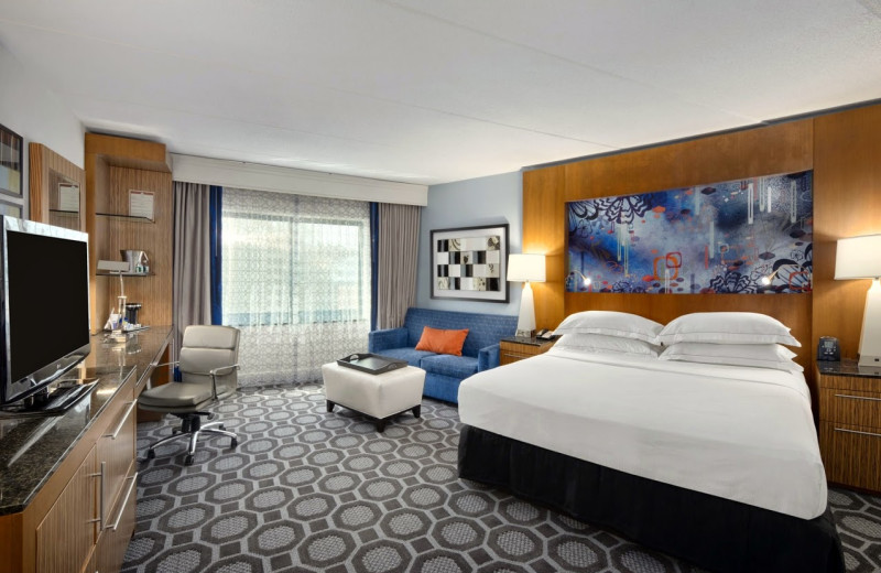 Guest room at Hilton-Long Island.