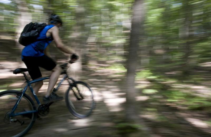 Biking at Mountain Harbor Resort & Spa.