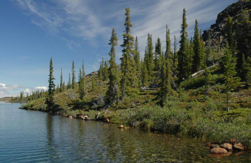 Shore side at Plummer's Arctic Fishing Lodges.