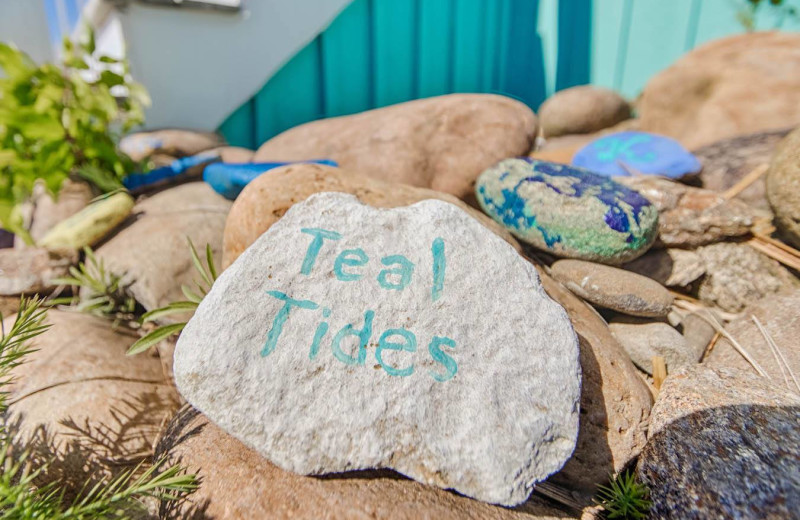 Painted rocks at Realty World - First Coast Realty.