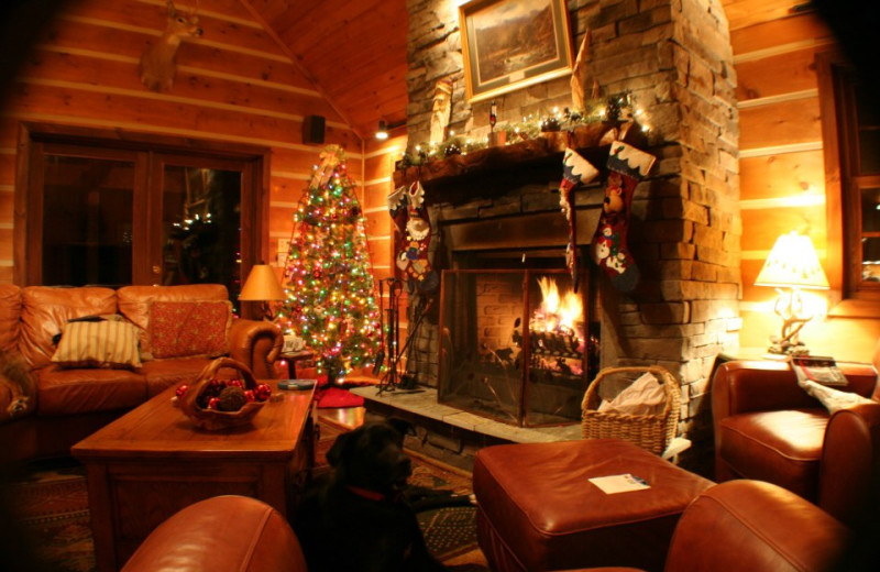 Holidays at Blue Ridge Cabins