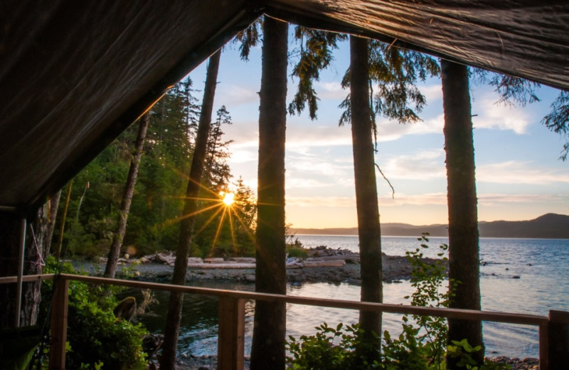 View from tent at Orca Camp.