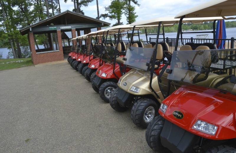 Golf carts at Yogi on the Lake.