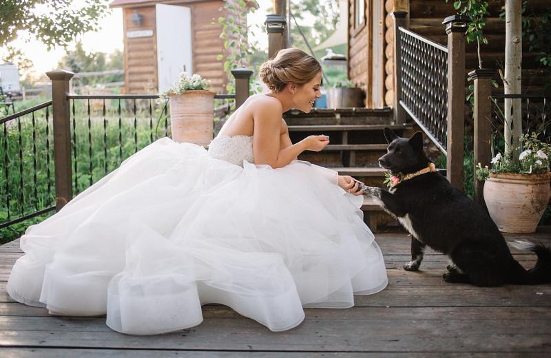 Bride and dog at Whispering Oaks Ranch.
