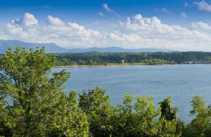 Lake near Auntie Belham's Cabin Rentals.