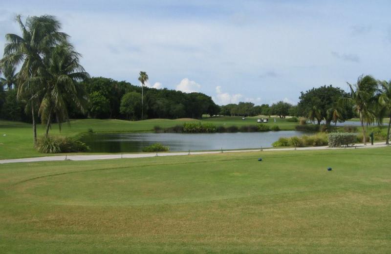 Key West Golf Club near Sheraton Suites Key West.