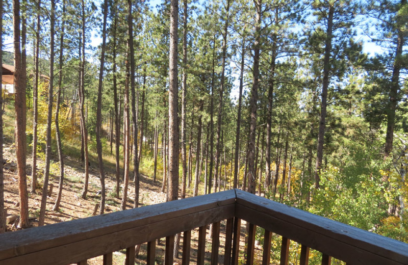 Rental balcony at Edelweiss Mountain Lodging.