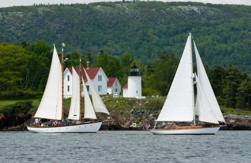 Sail boats at Mount Battie Motel.