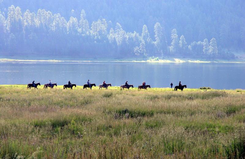 Horseback riding at Pine River Lodge.