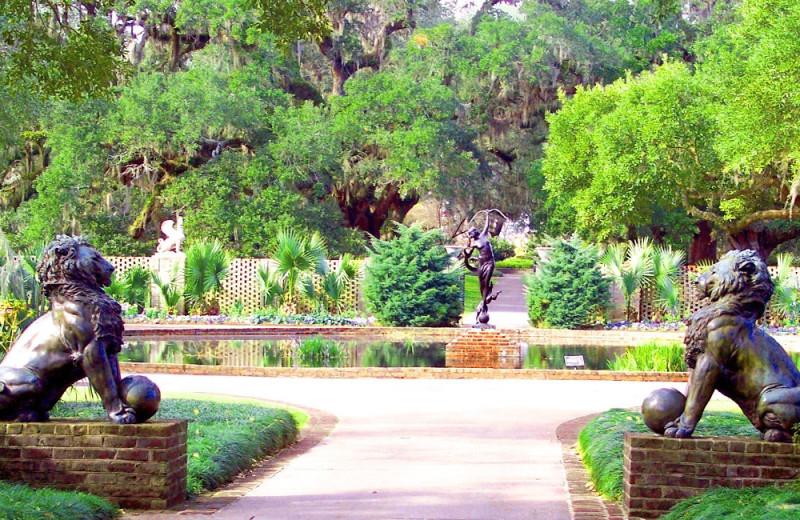 Garden near The Caravelle Golf & Family Resort.