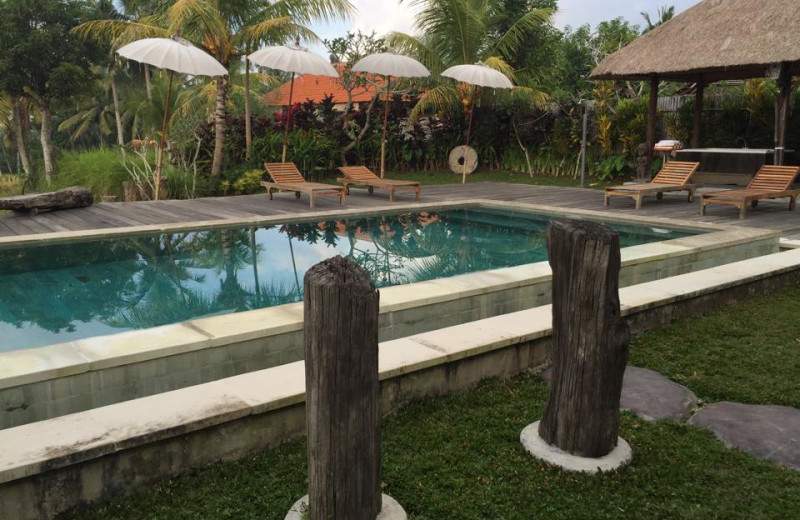 Outdoor pool at Ubud Sari Health Resort.