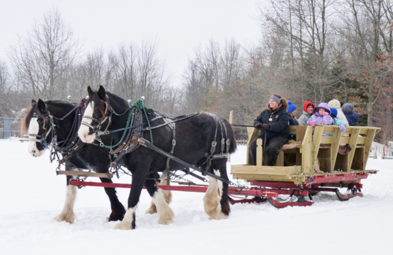 Sleigh ride at Double JJ Resort.