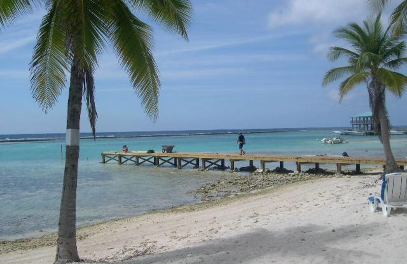 Beach at Brac Caribbean Beach Village.