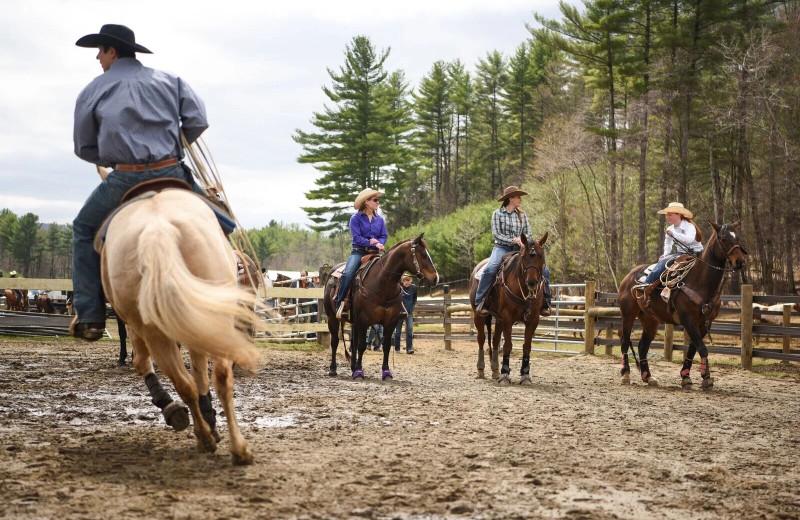 Horseback riding at 1000 Acres Ranch Resort.
