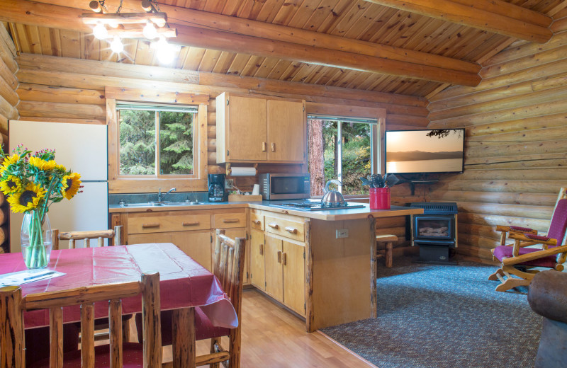 Cabin kitchen and living room at North Forty Resort.