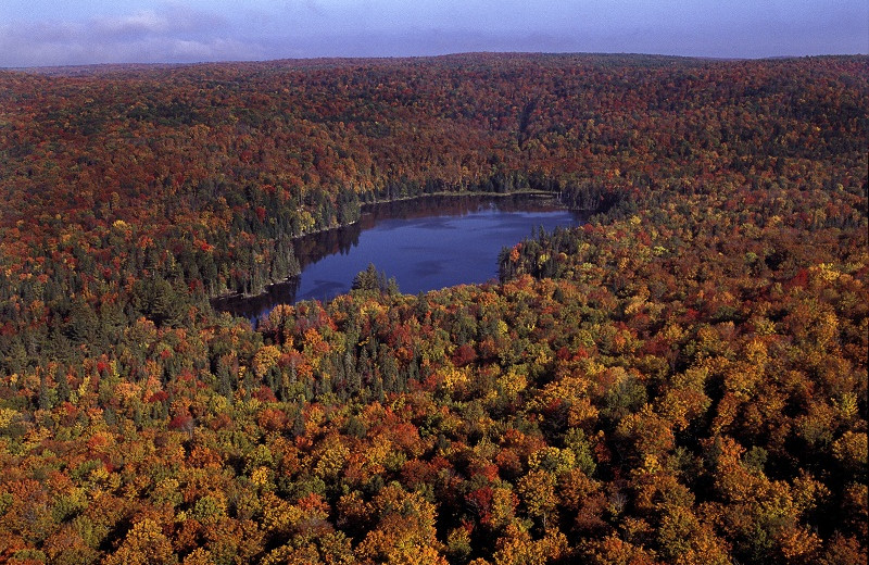 Aerial view of Algonquin Eco-Lodge.