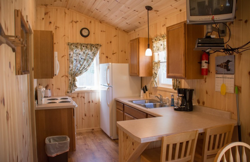 Cabin kitchen at Bear Paw Resort.