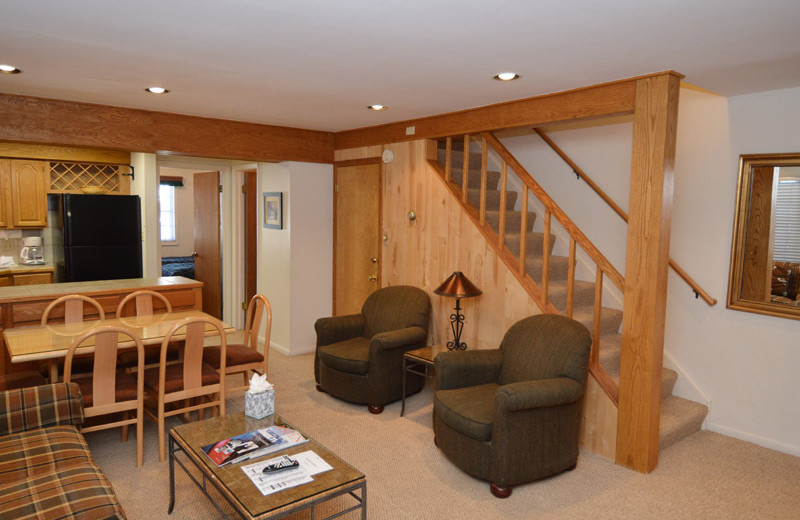 Rental living room at Frias Properties of Aspen - Alpenblick #11.