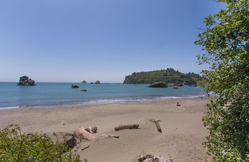 Beach at Trinidad Retreats.