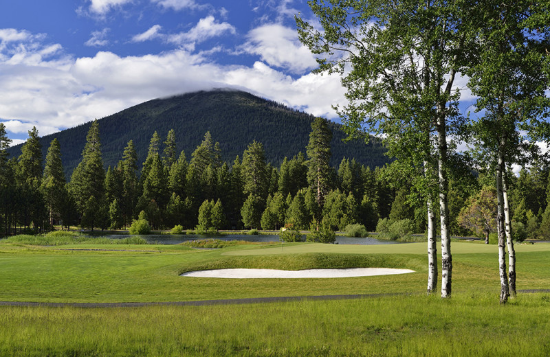 Golf at Black Butte Ranch.