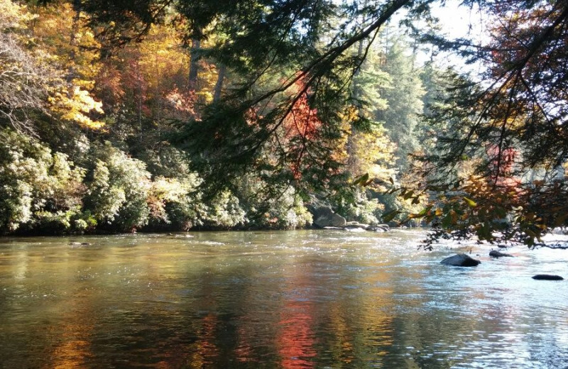 River at Nevaeh Cabin Rentals.