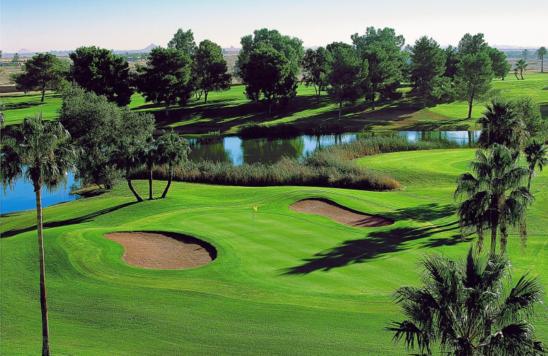 Golf course at Francisco Grande Hotel and Golf Resort.