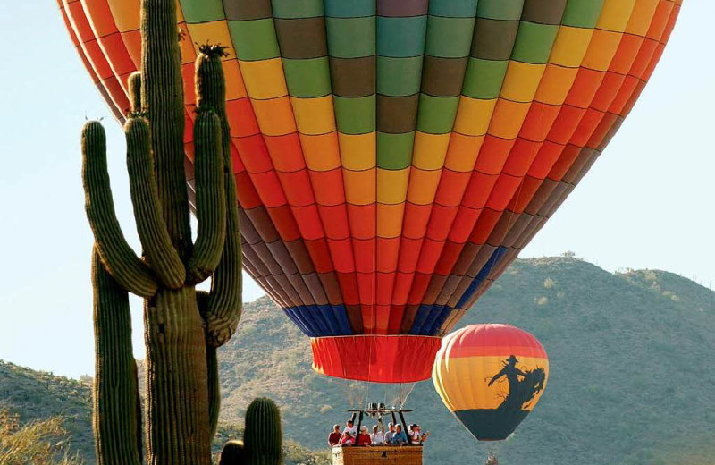 Balloon rides at Gainey Suites Hotel.