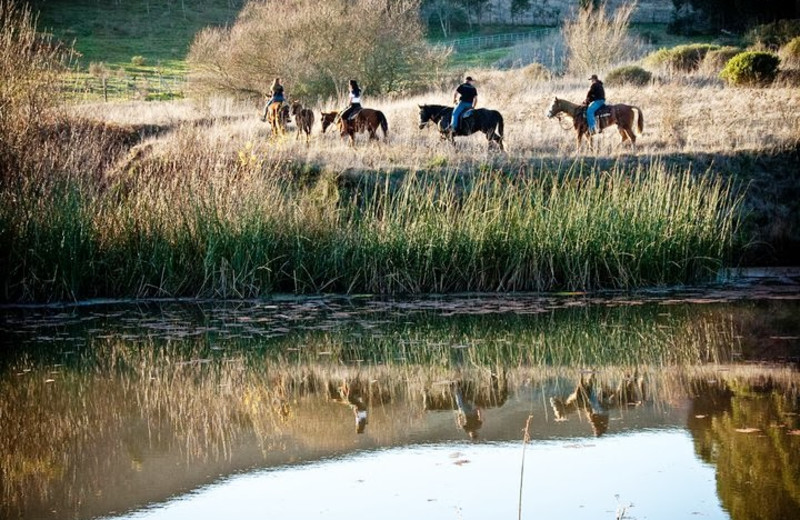 Horseback riding near Sonoma Coast Villa & Spa Resort.
