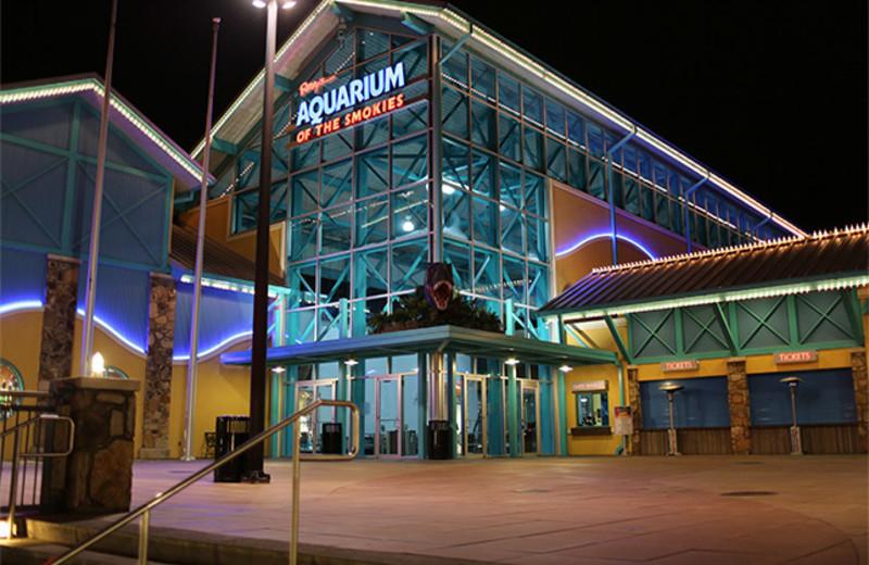 Ripley's Gatlinburg Aquarium near SmokyMountains.com.