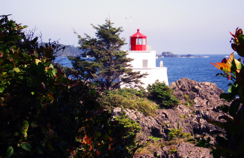 Lighthouse on Wild Pacific Trail just a 20 minute walk from Sutton Cottage.