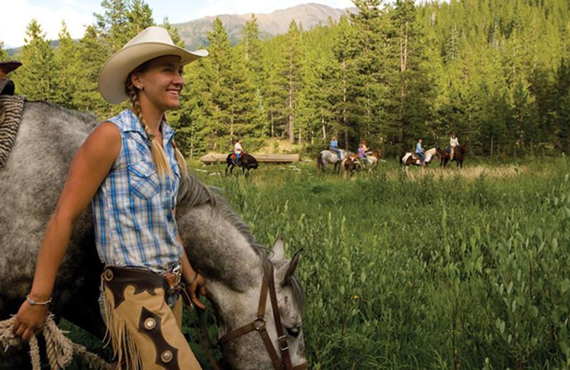 Horseback riding near Breckenridge Discount Lodging.