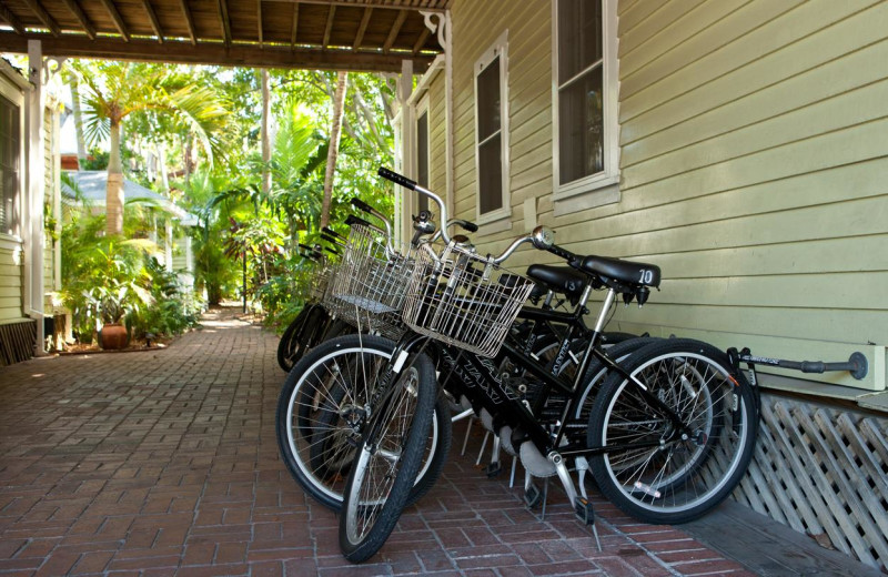 Bikes at Island City House Hotel.