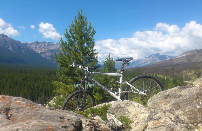 Mountain biking at Expanse Cottages.