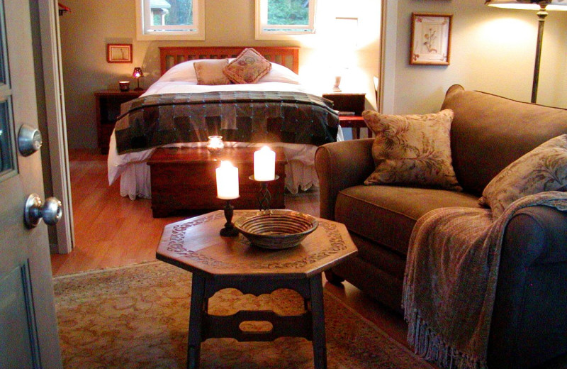 Cabin interior at WildSpring Guest Habitat.