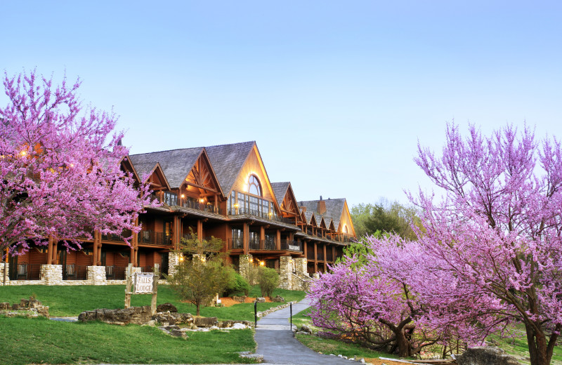 Spring at Big Cedar Lodge.