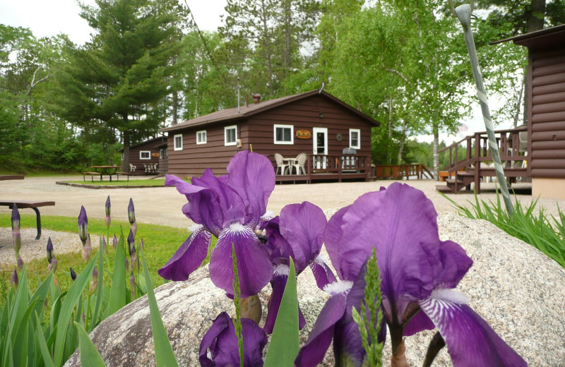 Cabins at Garden Lake Resort.