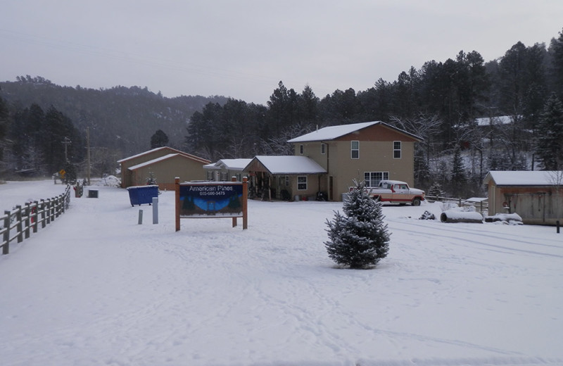 Winter exterior at American Pines Cabins.