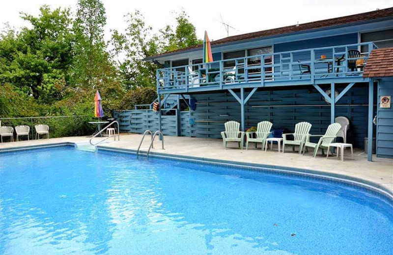 Outdoor pool at Pond Mountain Lodge & Resort.