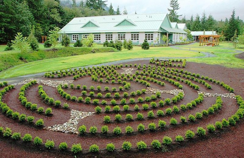 Maze at Honeymoon Bay Lodge & Retreat.