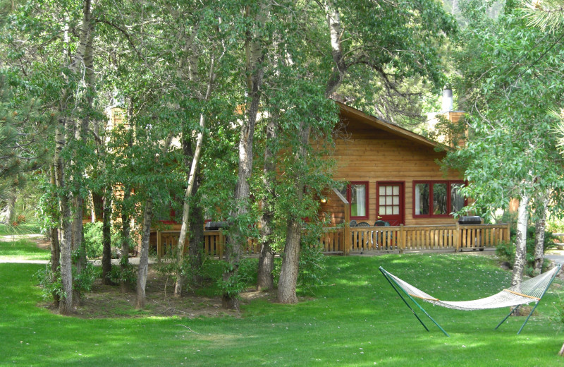 Cabin exterior at Streamside on Fall River.