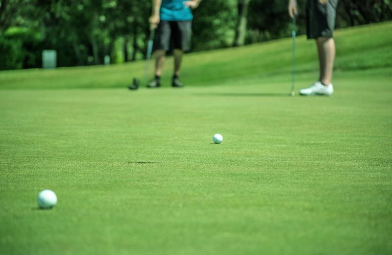 Golf near Brophy Lake Resort.