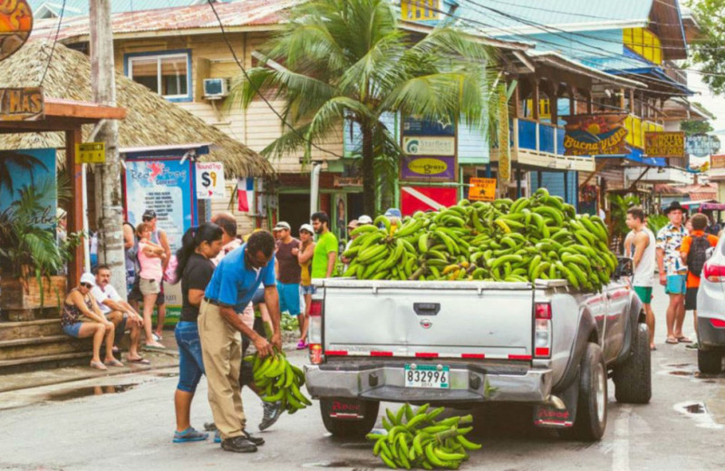 Market near Bocas Bali Resort.