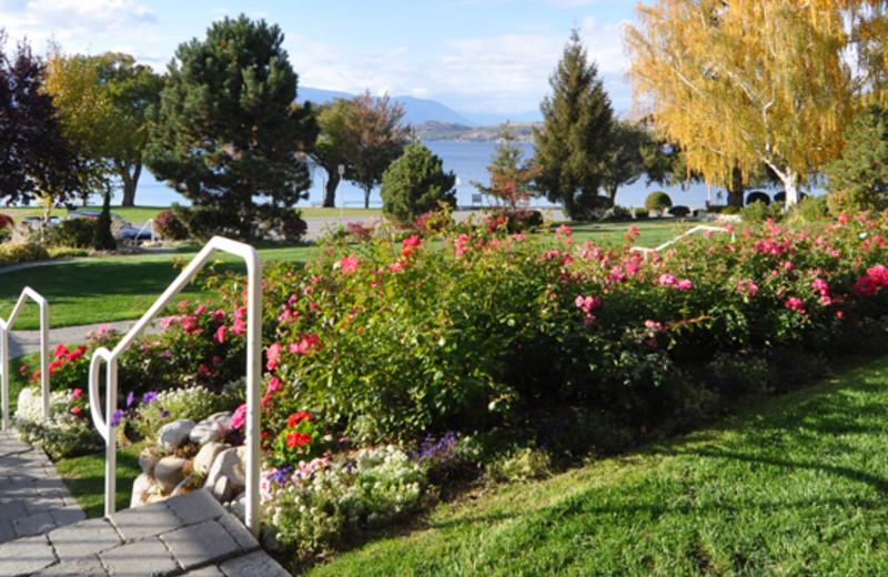 Walking path through resort at Lakeside Lodge & Suites.