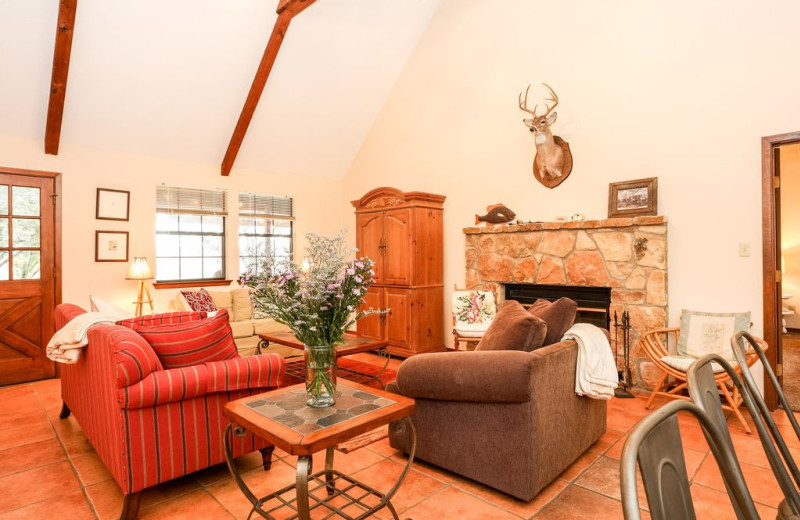 Living room at Farr Side Lake Vacation Home.