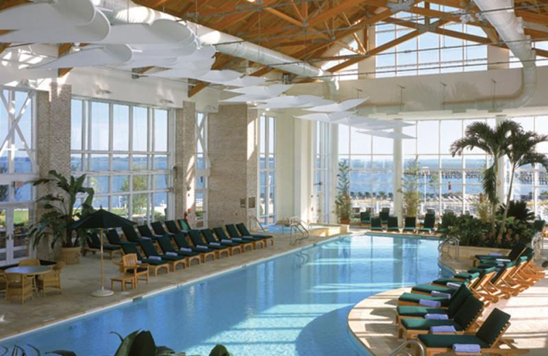 Indoor pool at Hyatt Regency Chesapeake Bay Golf Resort, Spa and Marina.